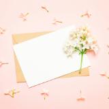出産内祝いのメッセージはどうやって書けばいいの ?のサムネイル